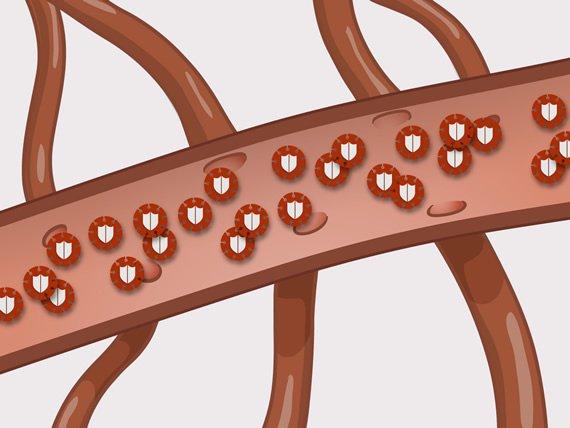 virusi hiv sida